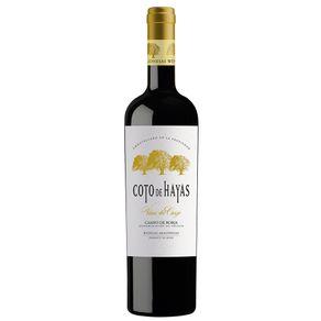 VIN-ESPH-COTO-DE-HAYAS-RESV-750ML-BORJA-TT