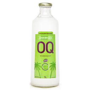 AGUA-COCO-NATURAL-OQ-1L-GF