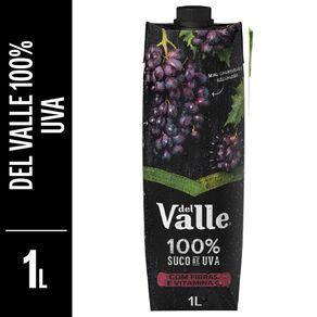 suco-del-valle-100-integral-uva-1l