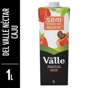 Néctar Del Valle Mais Caju Tetra Pak 1L