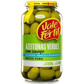 Azeitona-Verde-Vale-Fertil-com-Caroco-Vidro-500-g