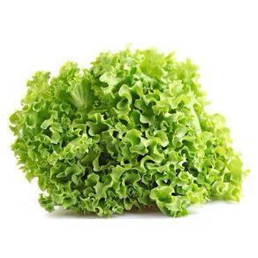 Alface-Crespa-Hidroponica-Todo-Verde-Unidade