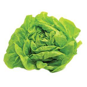 Alface-Hidroponica-Lisa-Todo-Verde-Unidade
