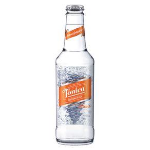 Agua-Tonica-Antactica-Gengibre-275ml