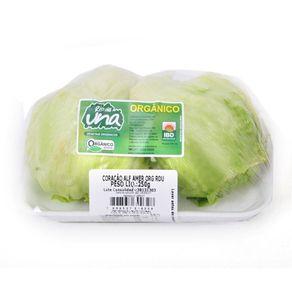 Alface-Americana-Organica-Rio-Una-300g