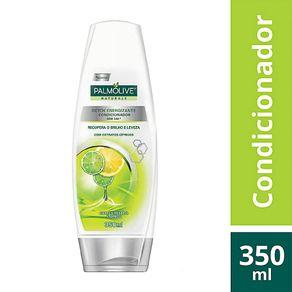 condicionador-palmolive-naturals-detox-energizante-350ml