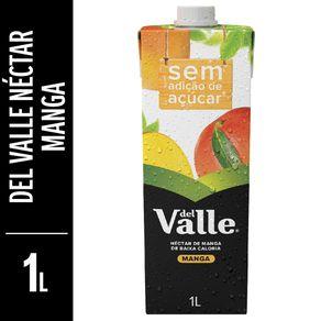 Nectar-Del-Valle-Mais-Manga-Tetra-Pak-1L