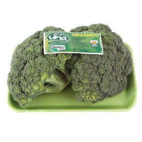Brocolis-Rio-de-Una-Organico-300g