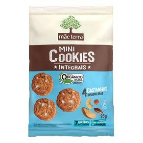 Cookies-Organico-Mae-Terra-Castanhas-25g