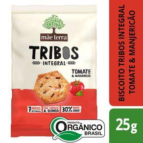 snack-organico-mae-terra-tribos-tomate-e-manjericao-25g