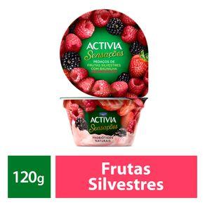 Leite-Fermentado-Activia-Sensacoes-Frutas-Silvestres-120g