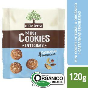 Cookies-Organico-Mae-Terra-Castanha-120-g