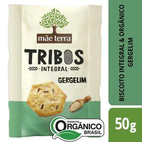 Snack-Organico-Mae-Terra-Tribos-Original-Pacote-50-g