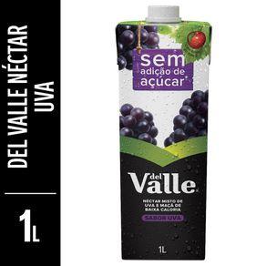 Nectar-Del-Valle-Mais-Light-Uva-Tetra-Pak-1L