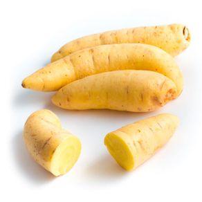 cenoura-baroa-processada-kg